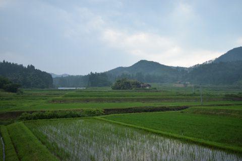 写真2:川本町の田園を選択