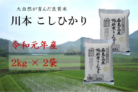 【先行予約!令和元年新米】しまね川本 コシヒカリ2kg×2袋