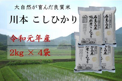 【先行予約!令和元年新米】しまね川本 コシヒカリ2kg×4袋
