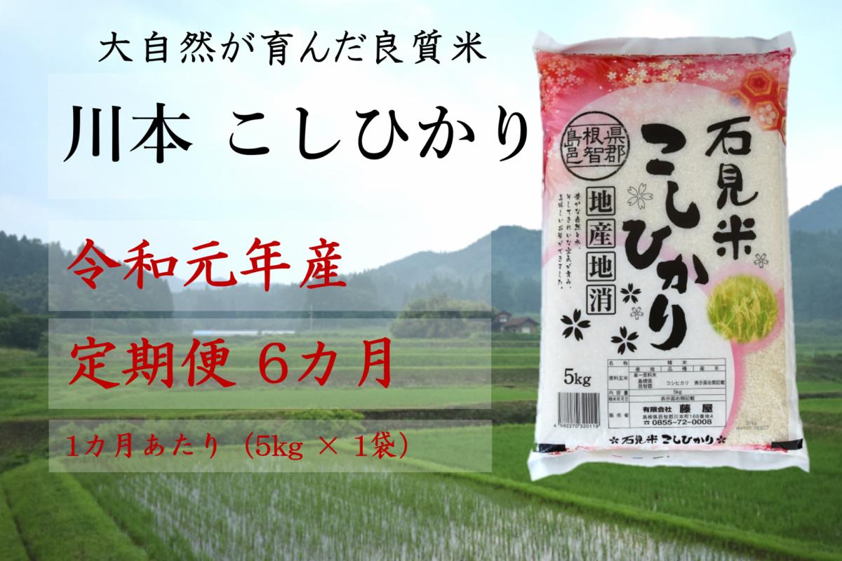 写真1:【先行予約!令和元年新米/お米定期便/6ヵ月】しまね川本コシヒカリ5kg(計30kg)