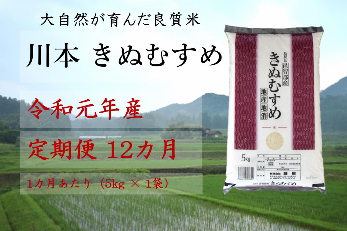写真1:【先行予約!令和元年新米/お米定期便/12ヵ月】しまね川本 きぬむすめ 5kg (計60kg)