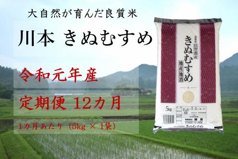【先行予約!令和元年新米/お米定期便/12ヵ月】しまね川本 きぬむすめ 5kg (計60kg)