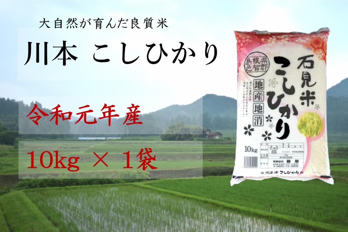 写真1:【先行予約!令和元年新米】しまね川本コシヒカリ10kg