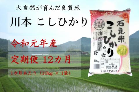 【先行予約!令和元年新米/お米定期便/12ヵ月】しまね川本コシヒカリ10kg(計120kg)
