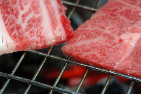 【とろける美味しさ】石見和牛肩ロース焼肉用450g